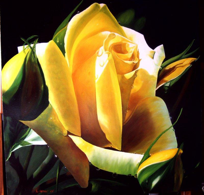 buona notte e buona mattina  dans immagini buon...notte, giorno rosa_con_%20boccioli_%2095x95