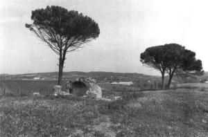 2d673dc37a Quando gli Arabi nel mese di giugno dell'anno 827 sbarcarono in Sicilia,  occuparono in breve tempo e distrussero Agrigento, e poi dilagarono nel  territorio ...